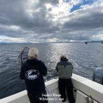 eagles-wings-wilderness-lodge-southeast-alaska-20