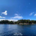 eagles-wings-wilderness-lodge-southeast-alaska-21
